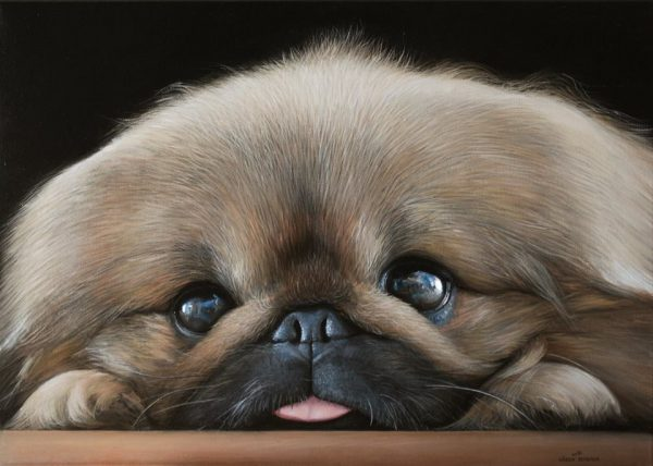 Portrait of Leo, 2014, 19,7x27,6, oil on canvas