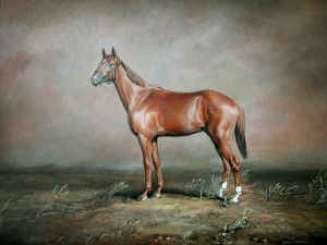 "Horse ""Banker"" (Thoroughbred) 2005, 13.7х10.6 inche, canvas, oil"