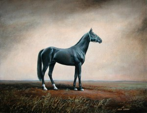 "Horse ""Graph"" 2007, 10х13 inches, canvas, oil   см"