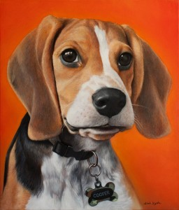 Portrait of the dog 2016, 27,5x23,6 inches - 70x60 sm, oil on canvas