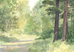 В лесу 2005г. 24х34см к. м.
