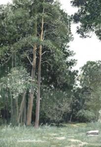 Сосны в Боровом 2001г. 45х32см бумага, темпера