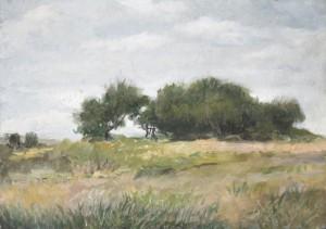 Спасск. Деревья 2008г. 24х34см к.м.